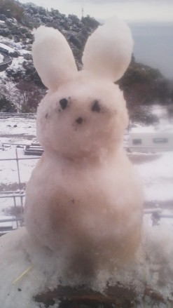 うさぴょん雪だるま