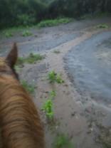 馬場に川が!