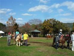 乗馬会風景